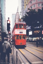 For a few cents, you can climb aboard one of the double decker tram cars that run through the center of downtown.