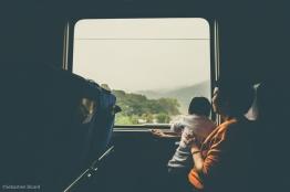 Train from Hong Kong to Guangzhou, China. February 2014.
