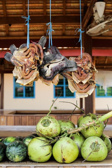 A rest stop food stall between Phnom Penh and Battambang offered dried fish and whole coconuts. Cambodia, March 2014.