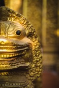 A golden lion protects a Buddhist wat in Battambang. Cambodia, March 2014.