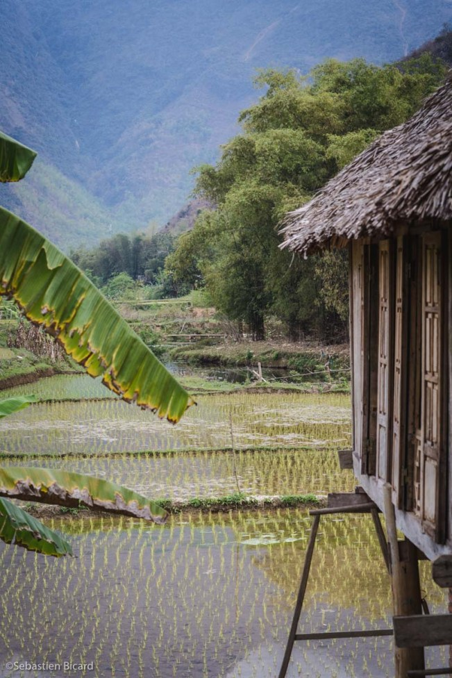 Bamboo hut in Mai Chau.