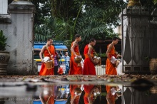 Young monks and novices make their way along the morning alms route in Luang Prabang, Laos, April 2014.