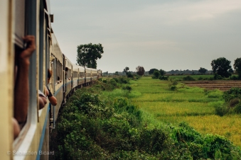 A view on the green fields from the train to Pyay, Myanmar. May 2014.